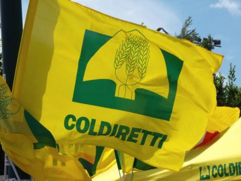 Tutto pronto per il XIII^ Forum regionale Coldiretti su ... - oggisud.it