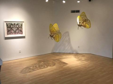 Las mariposas amarillas (Fotografía Vía Facebook de Andrés Paredes).