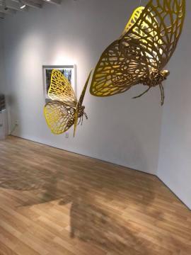 Mariposas y transformación (Fotografía Vía Facebook de Andrés Paredes).