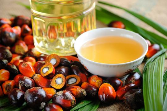 El aceite de palma, el sustituto de las grasas trans.