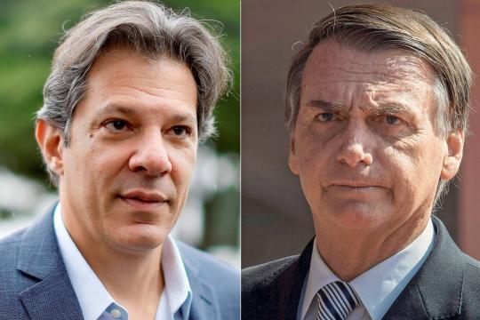 Pesquisas apontam Bolsonaro X Haddad. (Foto reprodução)
