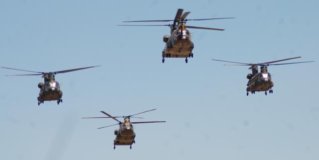 Patrulla de helicópteros Chinook en vuelo.
