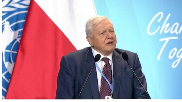 Sir David Attenborough warns of 'collapse of civilisations' at COP24 summit. [Image source/euronews (in English) YouTube video]