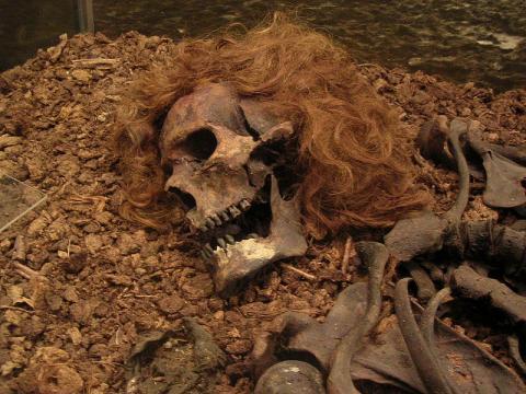 Descubrimientos de las momias en Egipto.