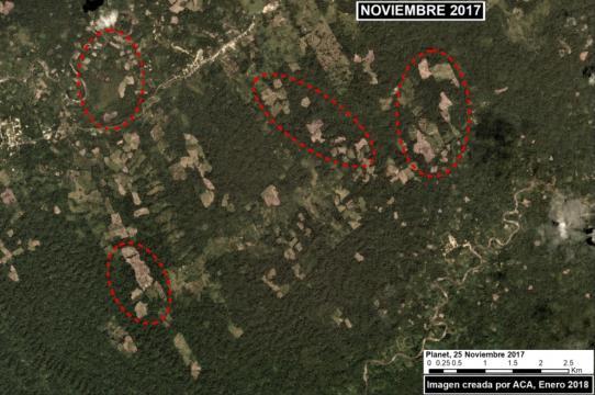 Deforestación en el distrito de Nieva, región de Amazonas. Foto: ACCA/MAAP.