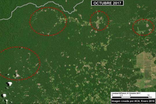Deforestación en la Amazonía centro, entre Ucayali y Huánuco. Foto: ACCA/MAAP.