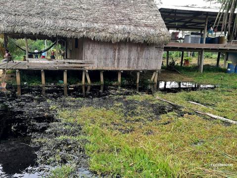 Petróleo derramado debajo de una vivienda indígena. Foto: Observatorio Petrolero de la Amazonía Norte.