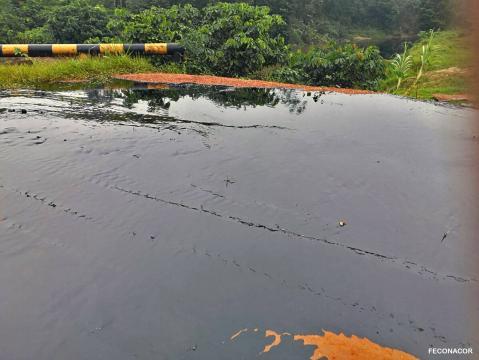 Petróleo derramado en la comunidad de Nueva Nazareth. Foto: Observatorio Petrolero de la Amazonía Norte.