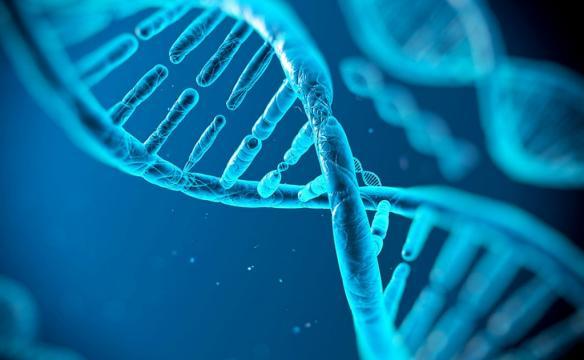 Molécula de ADN, algo tan microscópico con una capacidad gigantesca