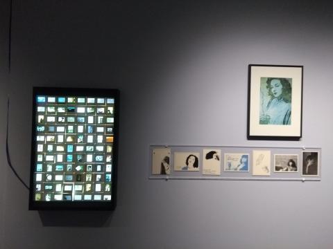 La trayectoria de Martínez Castro incluyó cajas de luz para enseñar sus diapositivas.