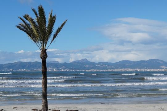 Local government in Palma, Mallorca is banning the rental of holiday apartments. [Image Pixabay]