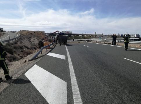 El cuerpo de bomberos se prepara para evacuar a los animales de la carretera. (Bomberos AB)