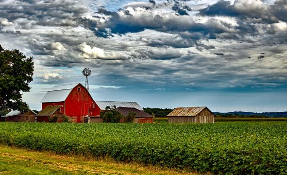 US farmers are worried they will lose their homes and businesses as they play the pawns in Trump's tariff chess game. (Image via Pixabay/12019)