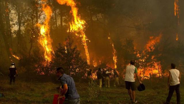 Incendios en Galicia: cuatro muertos y miles de hectáreas ... - marca.com