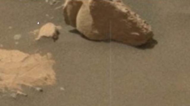 Immagine di una Testa di Leone ritrovata sul Pianeta Rosso.