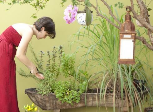 Além de decorativo, cuidar da horta também é terapeutico