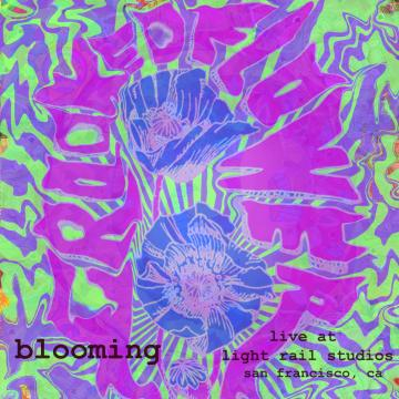'Blooming: The Light Rail Sessions' es la nueva propuesta musical de Crooked Flower
