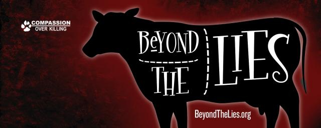 'Beyond The Lies' logo [Used with permission - COK]