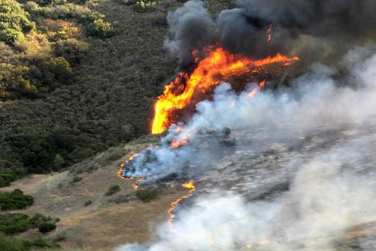 Wildfire raging in California (Image courtesy - Tyler C. Gregory, Wikimedia Commons)
