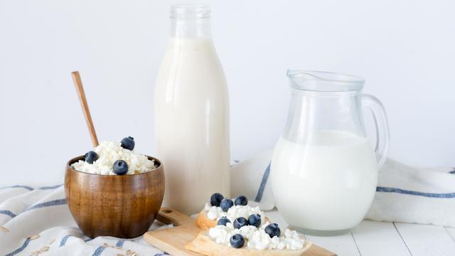 Lácteos amigos: un estudio sugiere que podrían ayudarnos a no ... - telemundo.com
