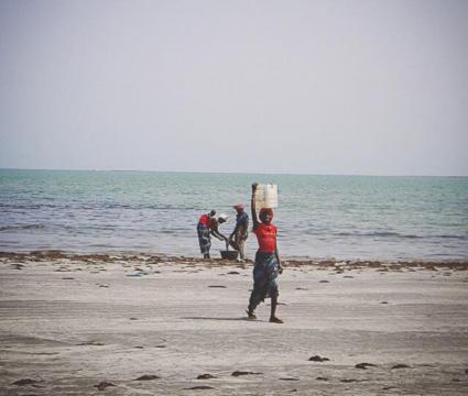 Mujeres limpiando el pescado en Sanyang