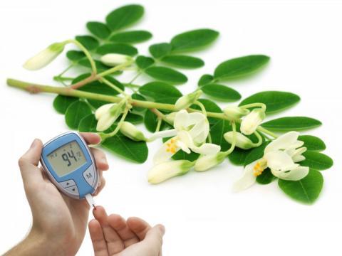 La moringa es beneficiosa para la diabetes en determinado tipo de preparaciones.