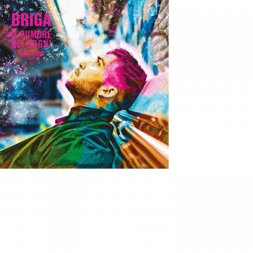 Briga, Il Rumore dei Sogni, cover del disco