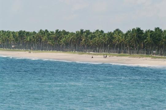 5 praias do Nordeste para você levar as crianças e fugir do frio ... - com.br