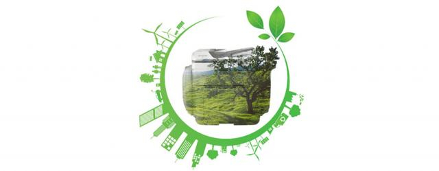 Apostemos por la sostenibilidad de nuestra disciplina