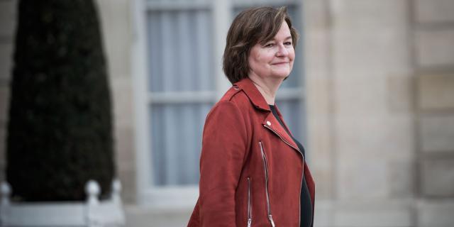 Européennes : les atouts et les faiblesses de Nathalie Loiseau ... - lejdd.fr