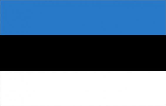A representation of the Estonian flag, regularly seen among politicians. [Image via mayns82 - Pixabay]