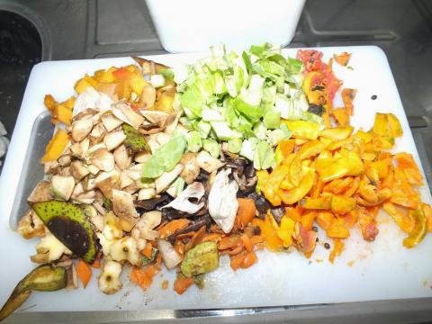 Alimentos que podem ser usados na compostagem - (Banco de imagens Blasting News)