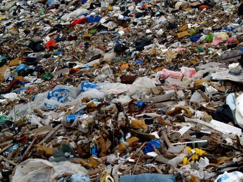 Como reduzir o lixo doméstico - (Banco de imagens Blasting News)