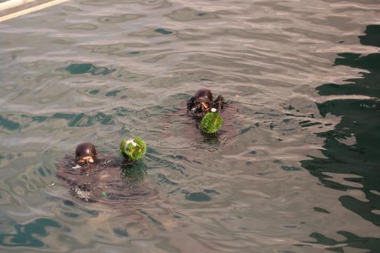 Misión cumplida. Dos buceadores muestran las minas que han retirado del casco de un barco.