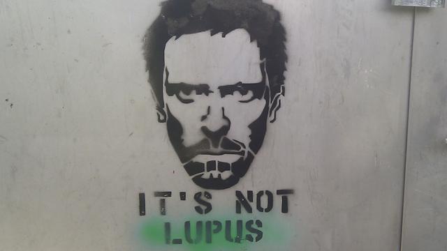 Further | Lupus: la enfermedad desconocida, pero no rara, que nos ... - theobjective.com