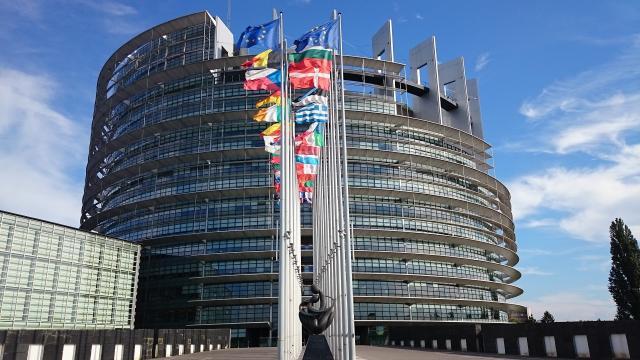 Brexit : incertitudes autour du nombre de députés européens à élire en France - 3