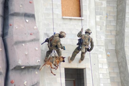 Los Boinas Verdes ingresan por todas las entradas del edificio incluido ventanas con la asistencia de perros de seguridad