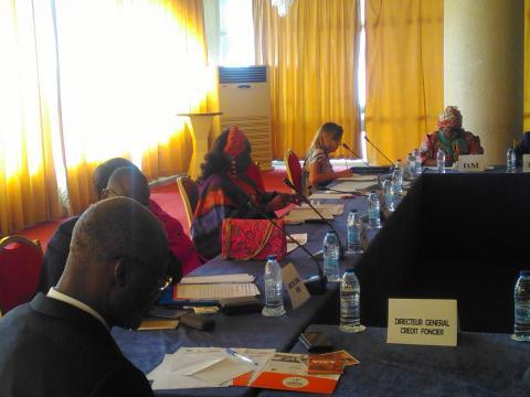 Table ronde de PTF dans le cadre du PPAB à Yaoundé à l'hôtel Mont Febe © Odile Pahai