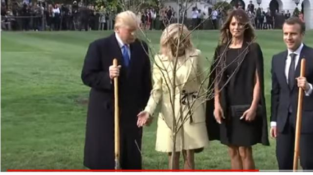 Trumps, Macrons plant French tree at White House. [Image Source/AP archive YouTube Video]