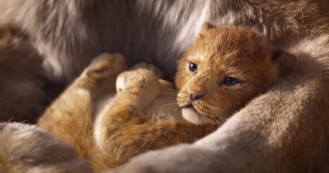 """Ad agosto al cinema il remake de """"Il Re Leone"""""""