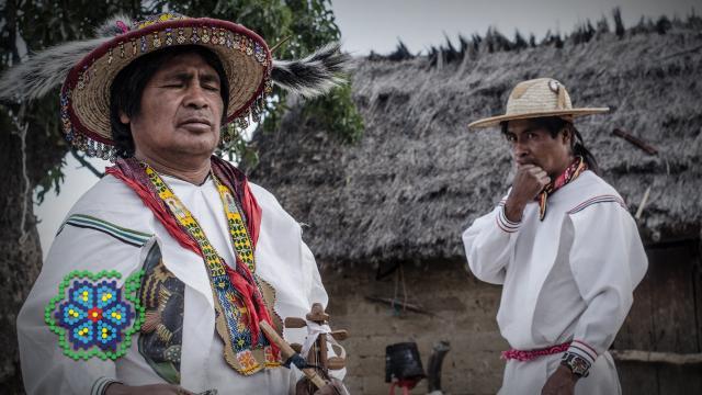 Los huicholes trabajan en pro de la paz - Periódico NMX - periodiconmx.com