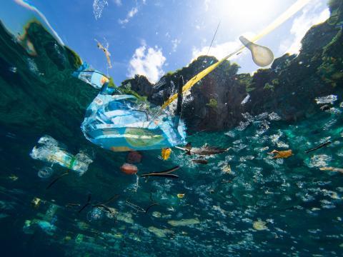 Oceani di plastica: un problema che ci sommergerà foto - ohga.it