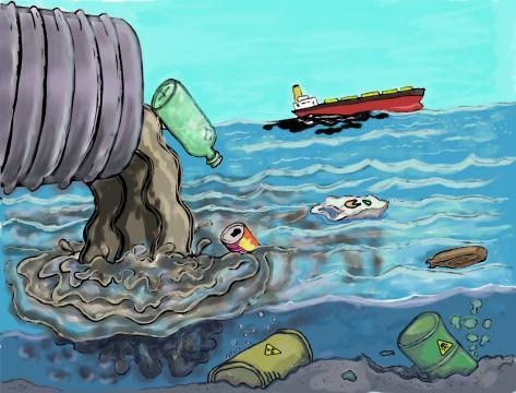 Cuidar el medio ambiente es responsabilidad de todos