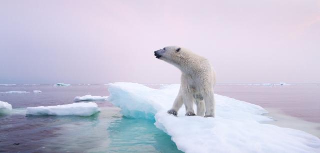 6 cose che devi sapere sull'evoluzione dei cambiamenti climatici ... - green.it