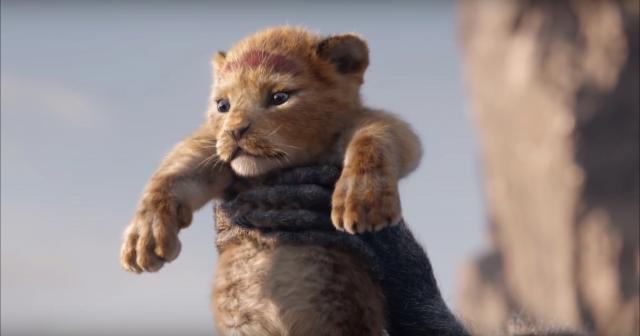 Il Re Leone al cinema il 21 agosto