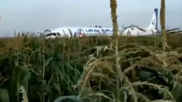 Ural Airlines plane makes 'miracle' emergency landing. [Image source/Al Jazeera English YouTube video]