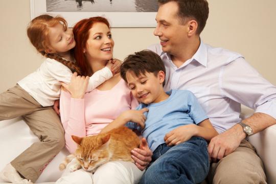Accueillir un chat adulte chez soi - Adopter un chat adulte ... - doctissimo.fr