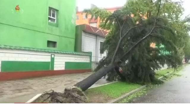 Typhoon Lingling kills three. [Image source/Sky News Australia YouTube video]