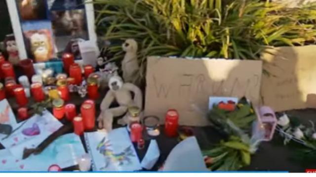 Tragic fire at German zoo ape house kills dozens of animals. [Image source/DW News YouTube video]