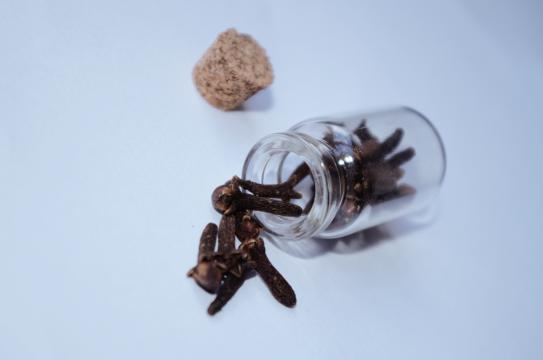 Images Gratuites : du vin, fleur, aliments, poivre, cuisine ... - pxhere.com